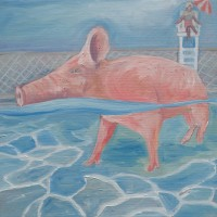 "Pig at the Pool(2015) • 12""x12"" • Oil on Canvas•$205"